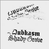 Dubkasm - Shady Grove (Peng! Sound) LP